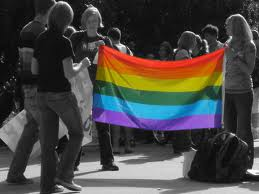 rainbow flag and students